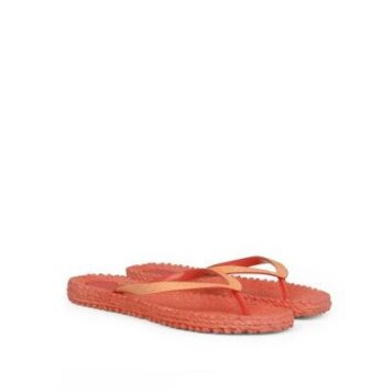 Cheerful 396 Indian red